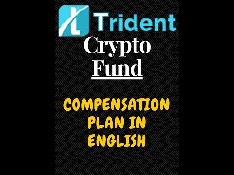 Trident Crypto Fund Compensation Plan in English