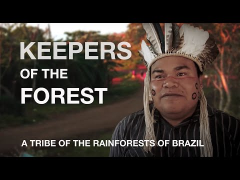 The Amazon fire crisis has been 500 years in the making – as Brazil's indigenous people know only too well