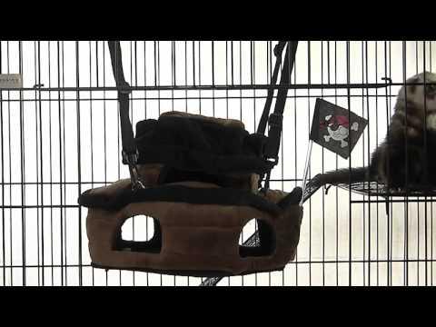 Hamaca Barco Pirata Marshall / Zona Animal Pet Shop