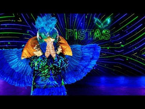 #QuetzalEs ¿Quetzal es 'Loreto', Miguel Pizarro, de la telenovela 'Rubí'? | Pistas