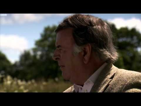 Terry Wogan And Brian D'arcy