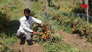 Farmers Ask For A Fair Price For Their Produce