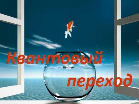 Психотерапевты Москвы, запись на прием, рейтинги и отзывы