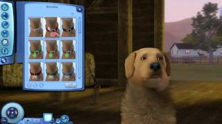 Sims 3 Pets Gone Wrong