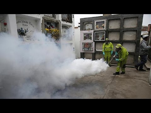 Fresh fears about Zika virus after three deaths in Colombia
