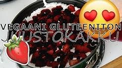MASTERPET #2 | vegaani gluteeniton juustokakku