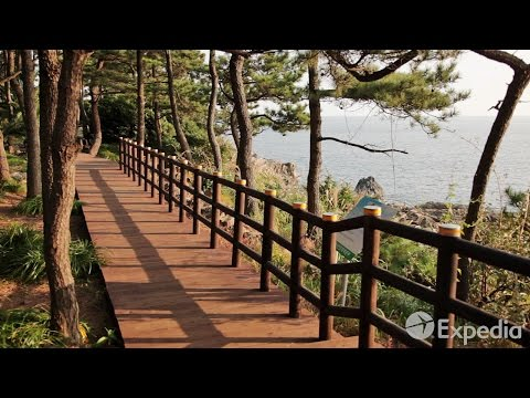 Olle Walking Paths, Jeju Island Vacation Travel Guide | Expedia