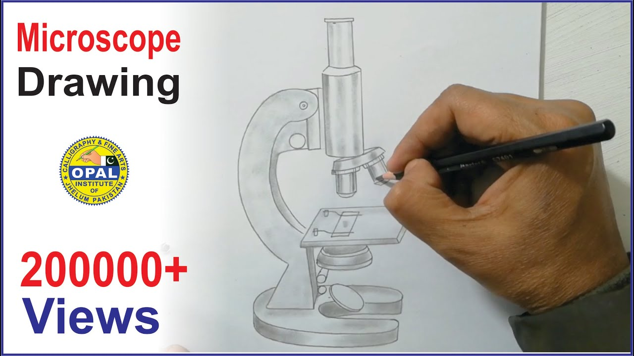 Biology    Practical CopyMicroscope  YouTube