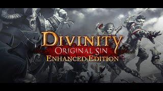 Divinity Original Sin Enhanced Edition Trailer
