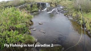 Fly Fishing in lost paradise 2