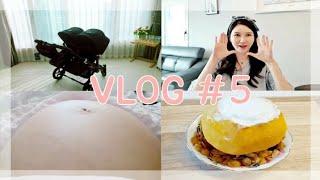 [VLOG] 29주 쌍둥이 임산부 일상 브이로그 #5 …