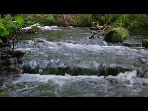 Download Waterfall with birdsong, calming and relaxing. Watch the crystal clear river to help you relax.