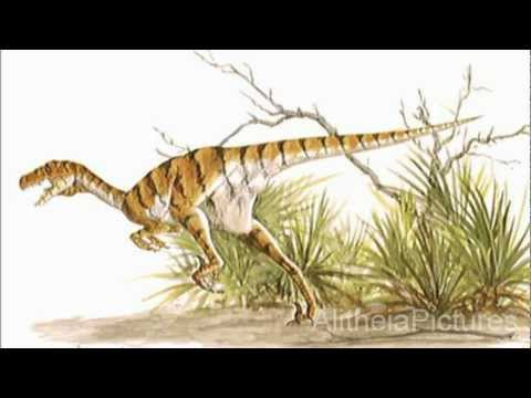 Ancient Reptile Tribute One: Dromaeosaurus Albertensis / Dromaeosaurid - Dinosaur.