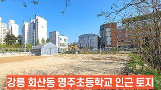 강릉 회산동 명주초등학교인근 토지 리더스공인중개사033…