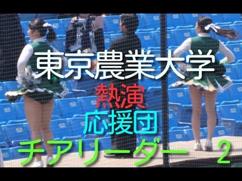 熱演 応援団  チアリーダー東京農業大学 2