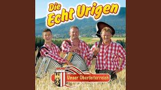 Stimmungshauer / Cowboy und Indianer (Hol das Lasso raus) / Gartenzwergmarsch (Adelheid...) /...