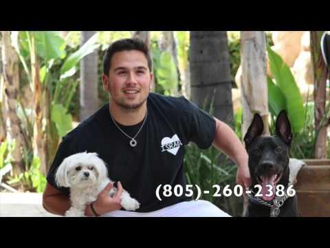 Santa Barbara County Animal Care Foundation