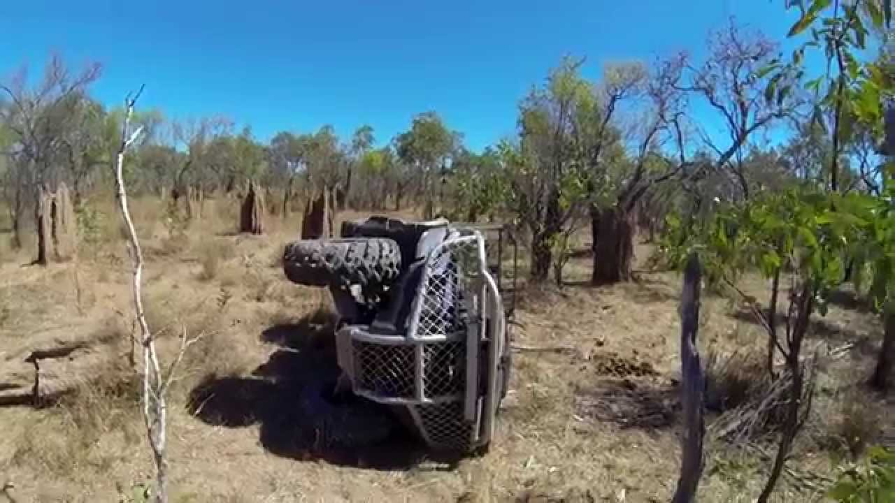 Hogs Dogs Quads 3 Extended Trailer Pig Hunting Wild