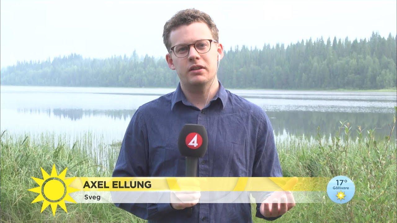 """Senaste om branden: """" Man får räkna med att det kommer bli värre…"""" - Nyhetsmorgon (TV4)"""