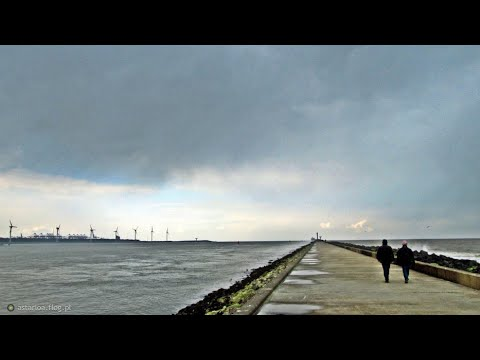 Największy port w Europie / Hoek van Holland