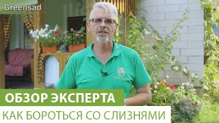 видео Борьба со слизнями.
