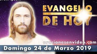 Evangelio de HOY Domingo 24 de Marzo 2019 A ver si da fruto,...
