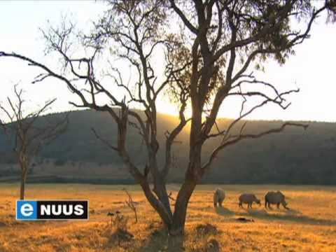 eNuus | A Film to Help Save the Rhino