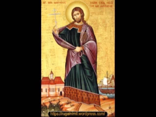 Psaltirea ortodoxă-Catisma 17-psalmul 118-IPS Teofan al Moldovei şi Bucovinei