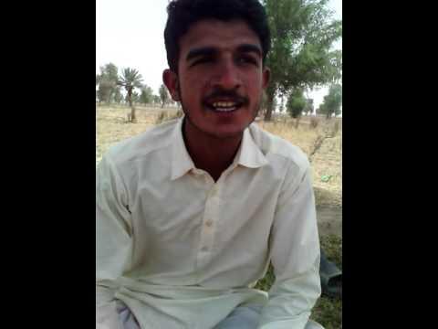 Shaman Ali jamali song