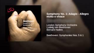 Symphony No. 1: Adagio - Allegro molto e vivace