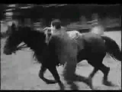 Польская кавалерия, часть 2