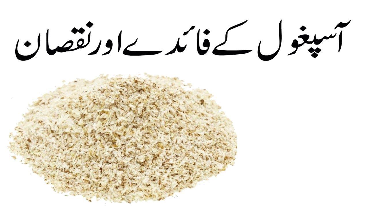 isabgol pentru pierderea în greutate în urdu)