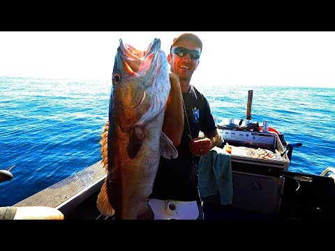 Bass and Groper fishing in New Zealand deep sea