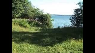 озеро отрадное лен. обл.