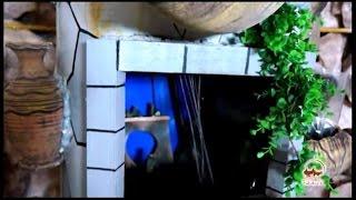 Санатории Узбекистана. Отдых и лечение в санаториях Узбекистана.(, 2014-03-29T05:45:49.000Z)