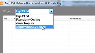 Bitcoin Private Key Auto Scanner