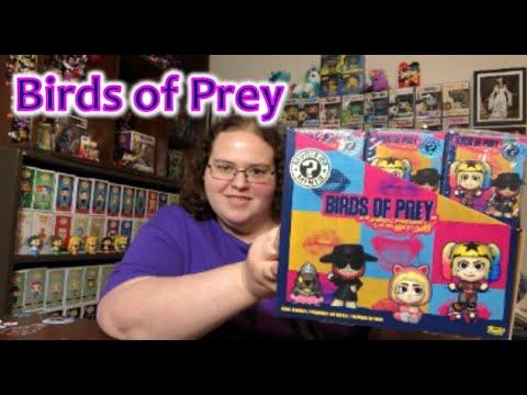 Birds Of Prey Mystery Minis Youtube