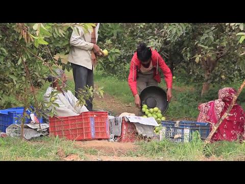 Watershed (Hindi Aug 2013)