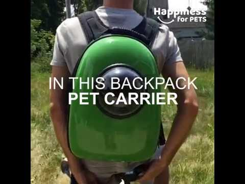 Upet the revolutionary backpack pet carrier