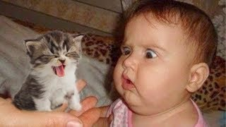 NEW Cat Meeting Newborn Baby First Time|| Funny Baby and Pet