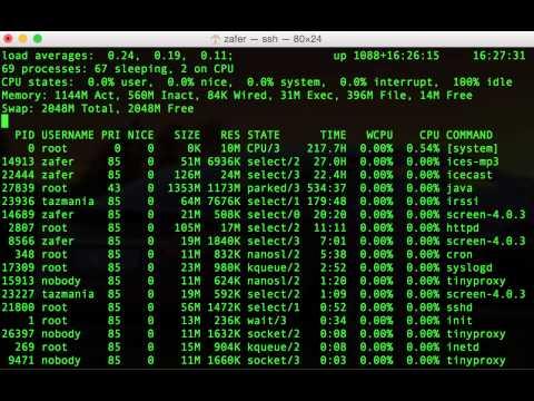 NetBSD uptime