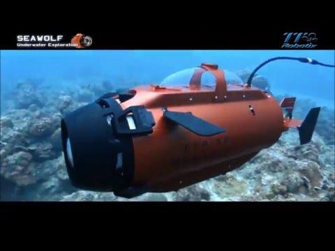 Seawolf Underwater ROV System.