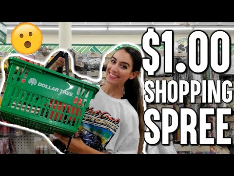 BIGGEST DOLLAR TREE SHOP WITH ME EVER!! YOU WON'T BELIEVE WHAT I FOUND FOR $1.00!