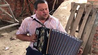 Crying Guitar Ukraine Accordian
