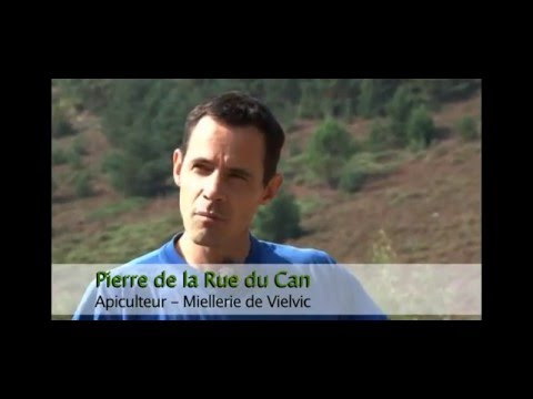 L' apiculture dans le Parc national des Cévennes