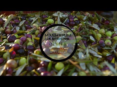 """Moulin à huile de Barbentane - """" L' huile d'olive 2015 sera de qualité """""""