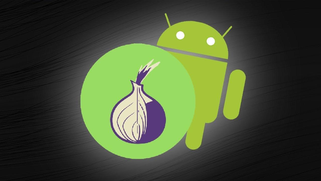 Тор браузеры на андроид гирда установка tor browser linux попасть на гидру