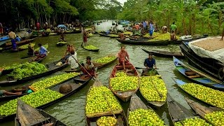 Barisal backwater and biggest floating market trip|Floating Market Bangladesh