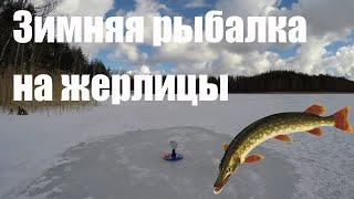 Рыбалка на жерлицы. Вкусная уха. Лесное озеро.[Jaala järv]