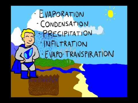The water cycle youtube the water cycle ccuart Image collections